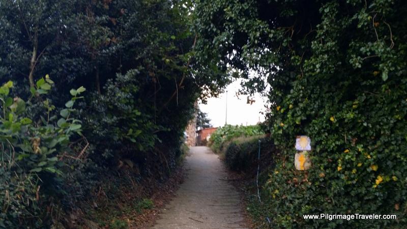 Inviting Little Walkway through La Pereda, Camino de Santiago, Asturias, Spain