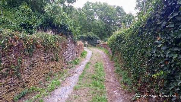 Rúa do Carme Funky Footpath through Lugo, Spain