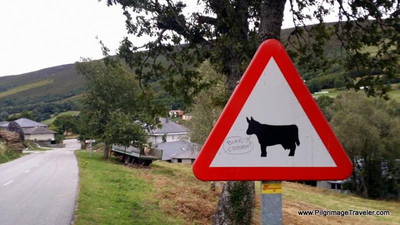 Buen Camino Cow, sign in La Mesa, Spain