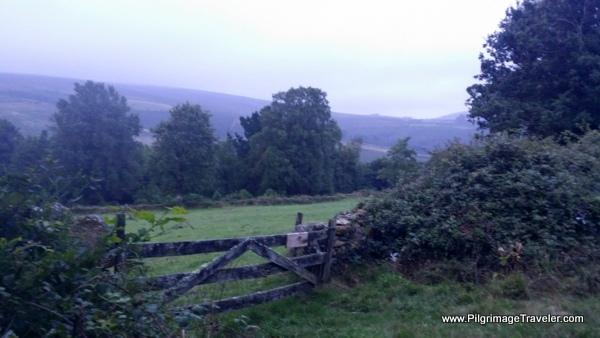 Country Fence Near Arnade, Camino Primitivo