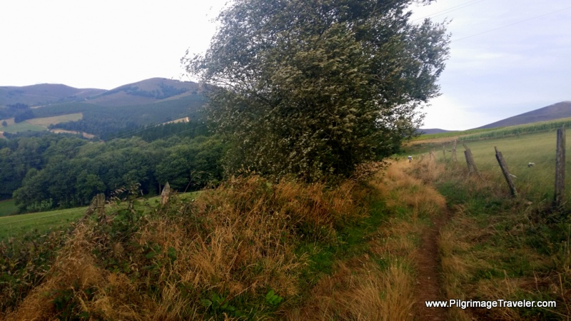 Just beyond Borres, Country path on the Camino Primitivo