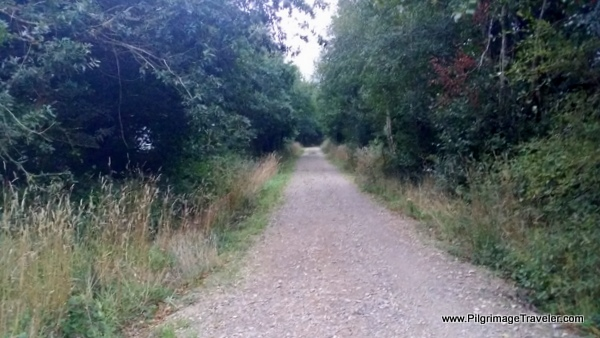 Path to Vilouriz, Camino Primitivo