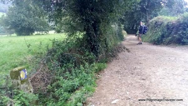 The Lane Continues Toward Vilouriz, Camino Primitivo