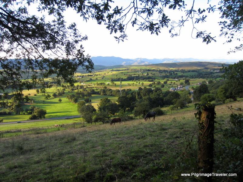 Horses Graze in the Meadow on the Original Way, near La Pareda, Asturias, Spain