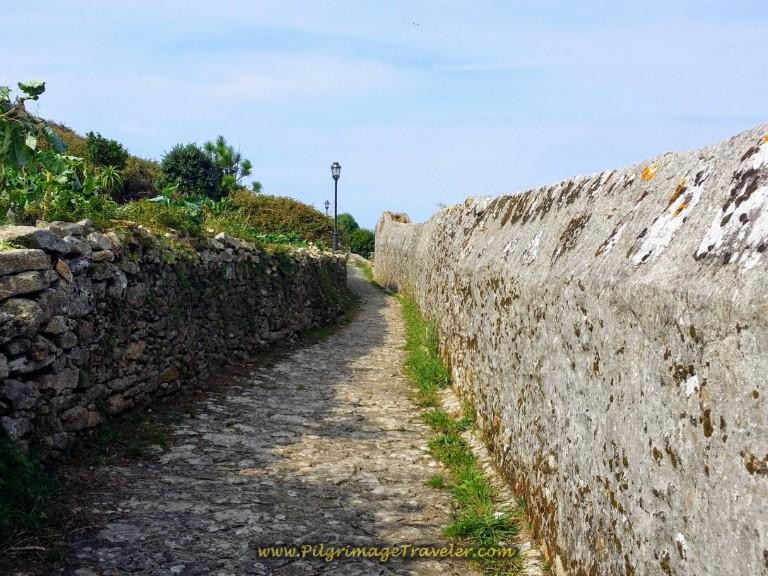 Peninsula Path to Land's End
