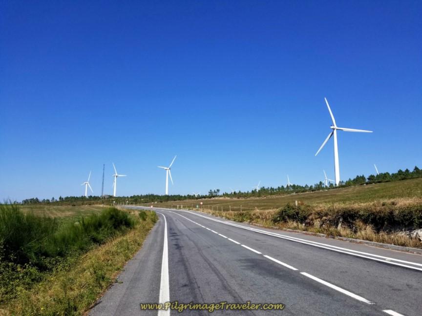Windmills Line the DP-3404