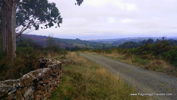 Walking Toward Vilamor, Camino Primitivo
