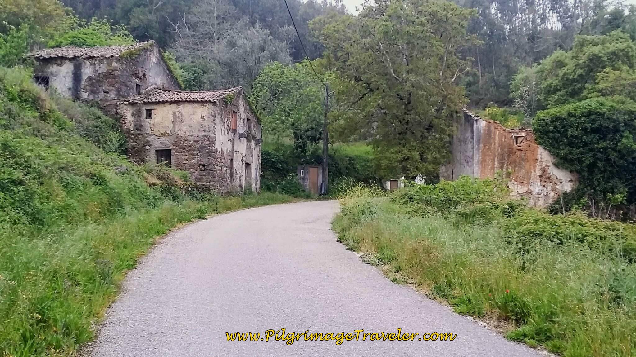 Quaint Countryside on Day Seven, Camino Portugués