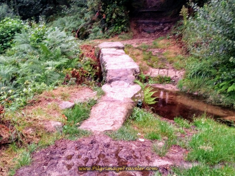 Path Descends to Cross Small Stream on day one of the Camino Finisterre