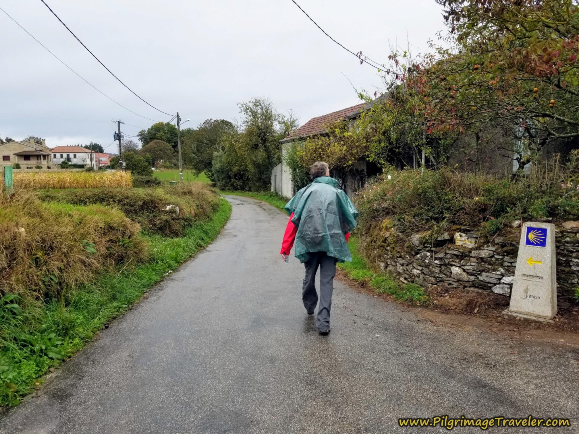 Left Turn Towards Donsión on the Camino Sanabrés, Estación de Lalín to Bandeira