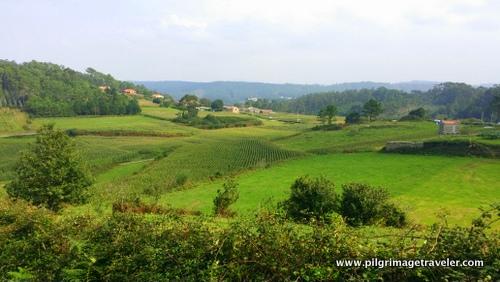 Verdant Fields on the Camino Finisterre to Muxía