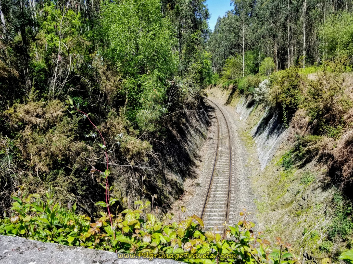 Cross Railroad Tracks on the Rúa Couto on Day Five of the Camino Inglés