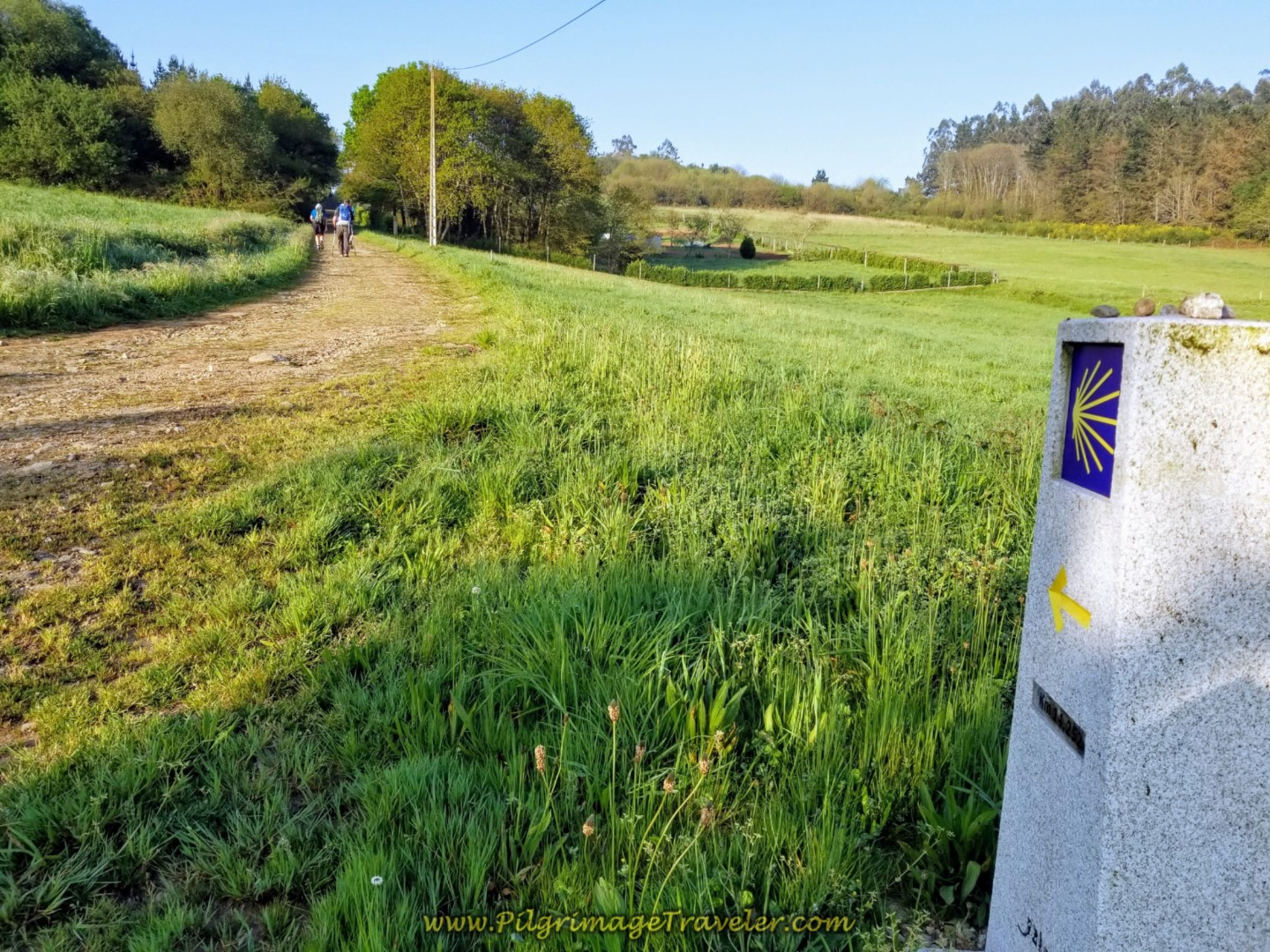 Turn South on Lane, Pass 13.96 Kilometer Waymark on day eight of the Camino Inglés