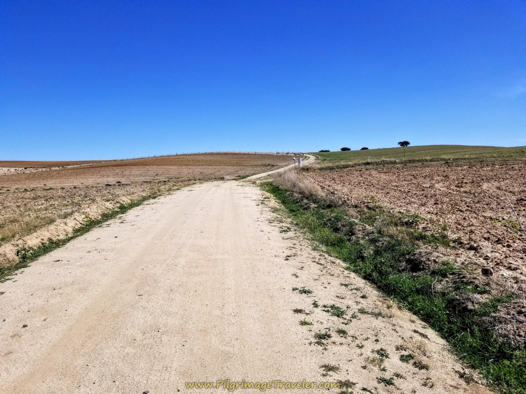 Hot and Open Climb towards Alba de Tormes