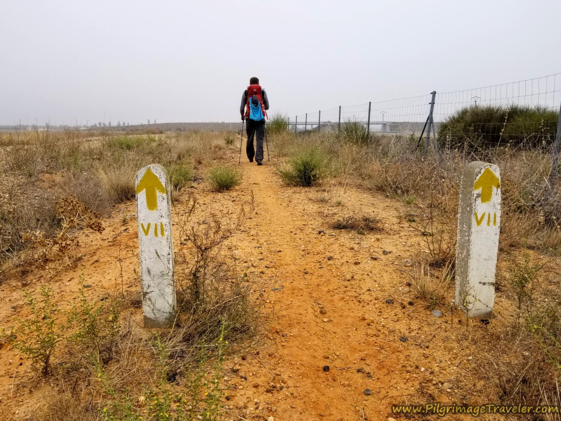 Pillars Counting Down to El Cubo de Tierra del Vino