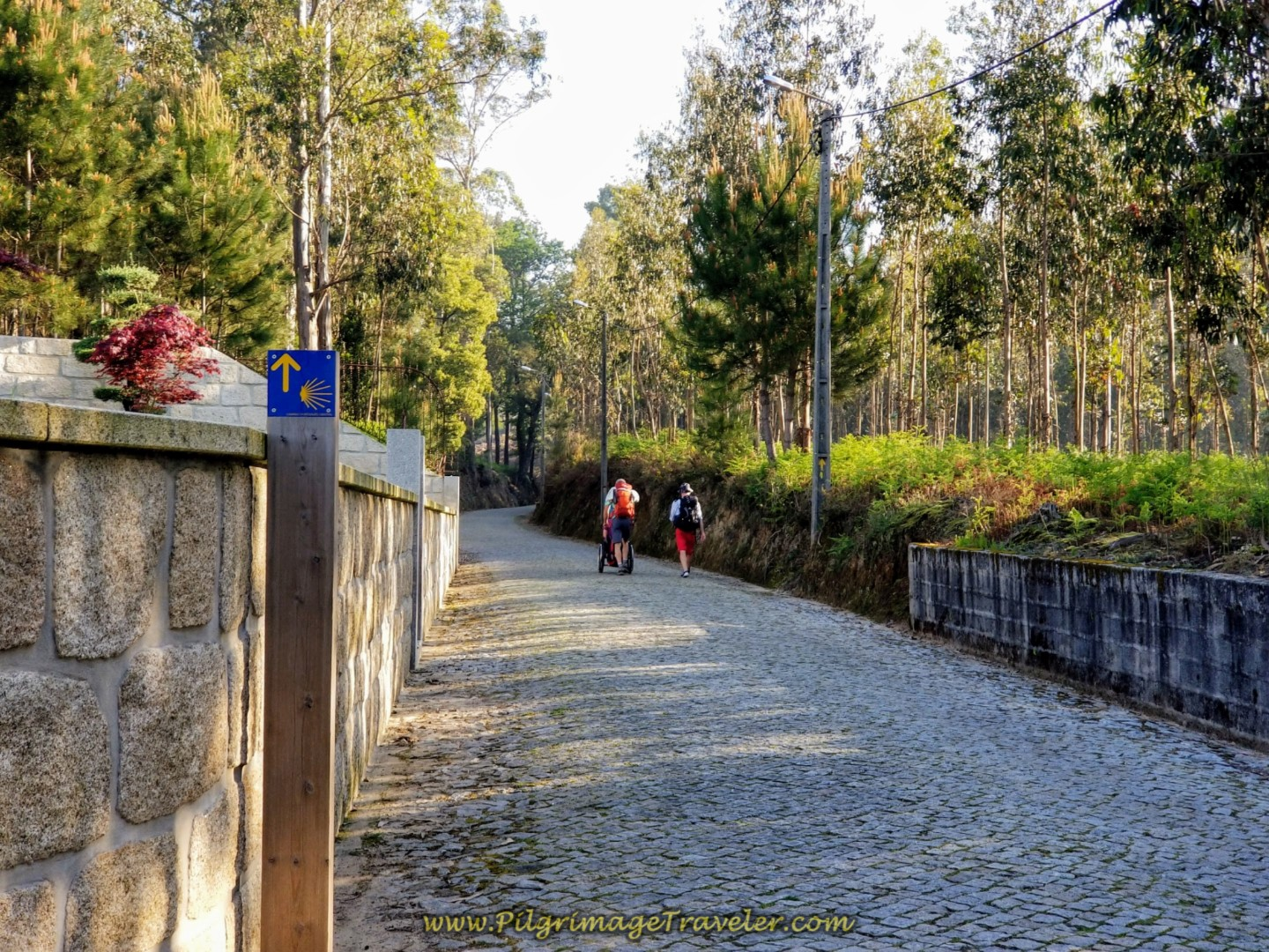 Elevation Eases But Still Up on Cobblestone