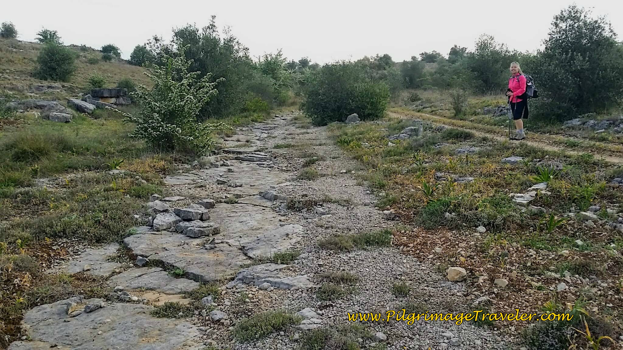 Elle by an Ancient, Possible Roman Road