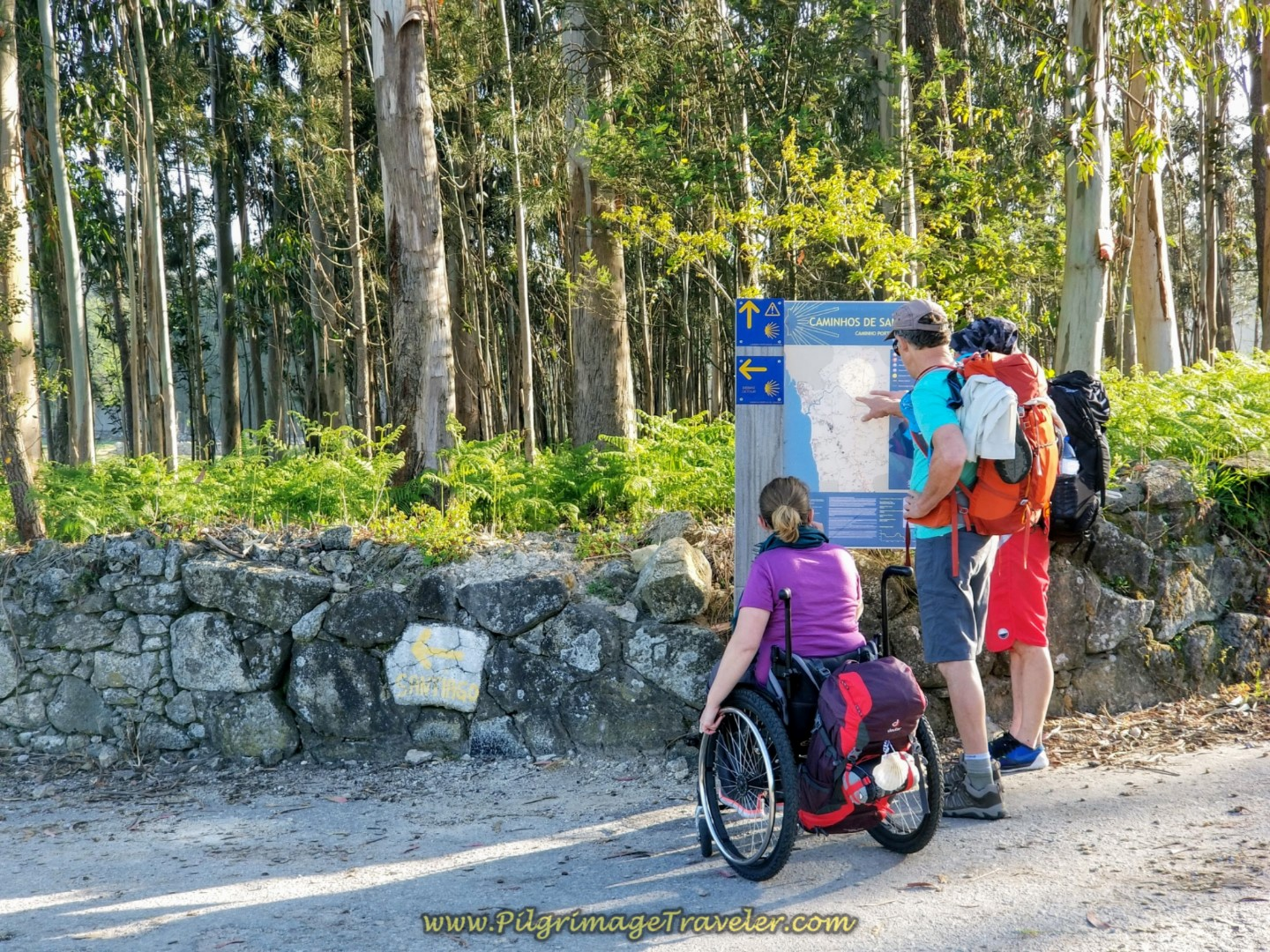 2nd Decision Point on the N306 on day sixteen of the Central Route of the Camino Portugués