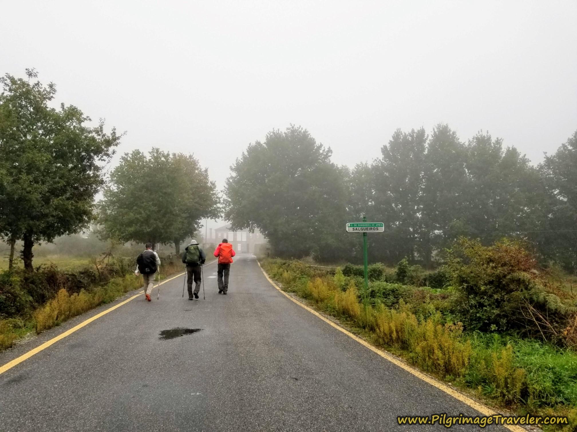 Entering Salgueiros, Camino Sanabrés, Xunqueira de Ambía to Ourense