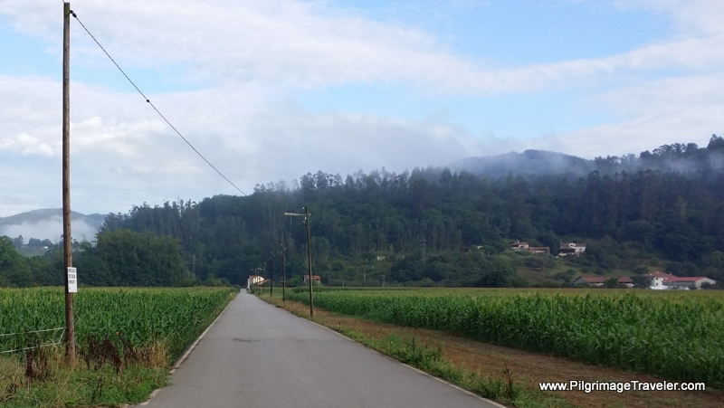 Long, Flat, Paved Road to Paladín, on Day Two of the Camino Primitivo, Asturias, Spain