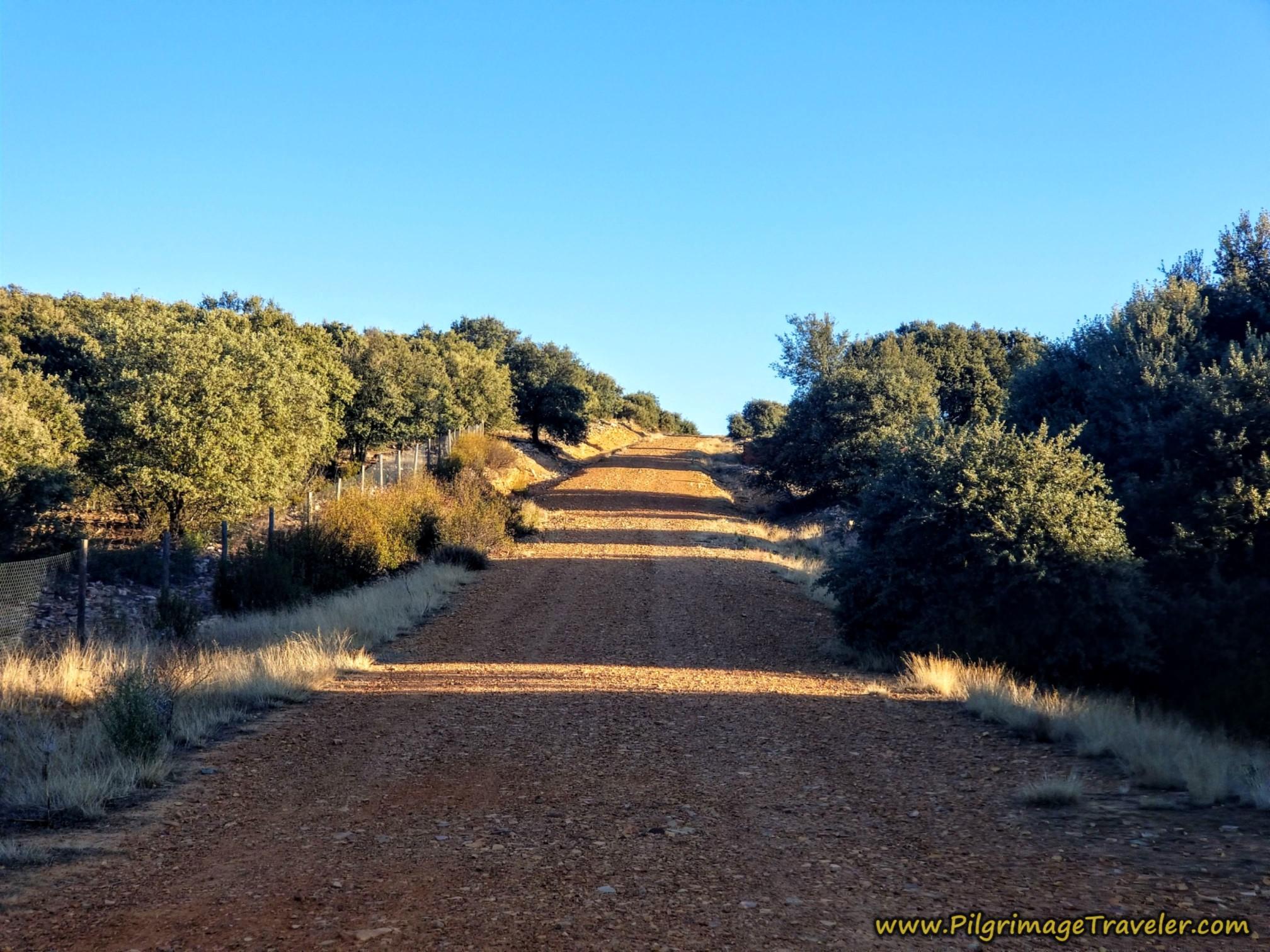 Begin First Hill Climb