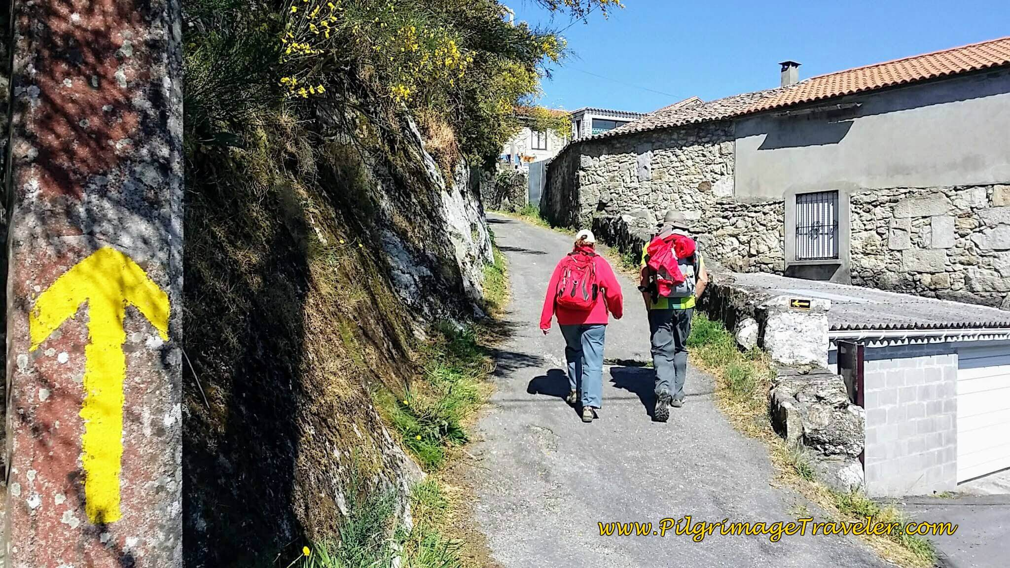 Follow the Yellow Arrow on Day Nineteen of the Portuguese Way