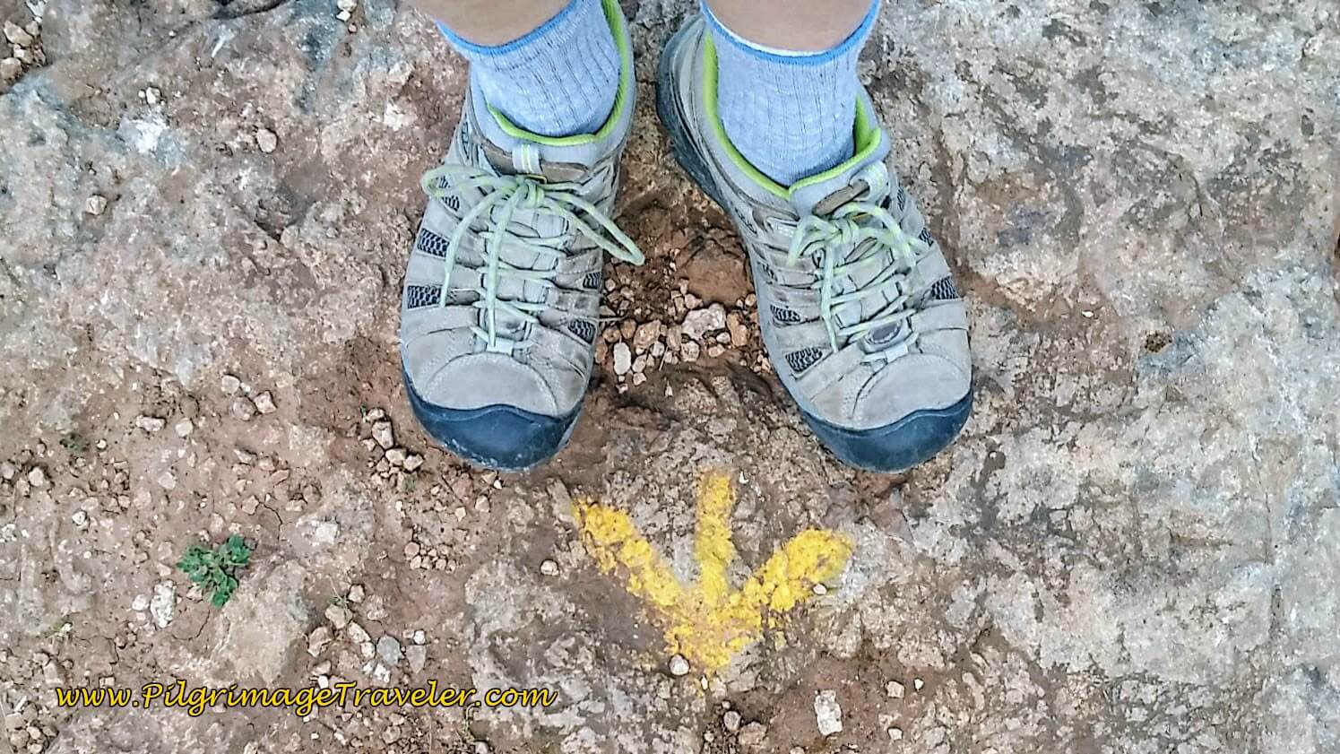 Painted Yellow Arrows on Rocks on Portuguese Camino