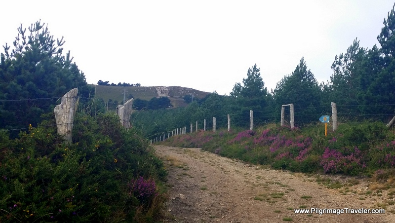 The Camino Primitivo Goes Higher