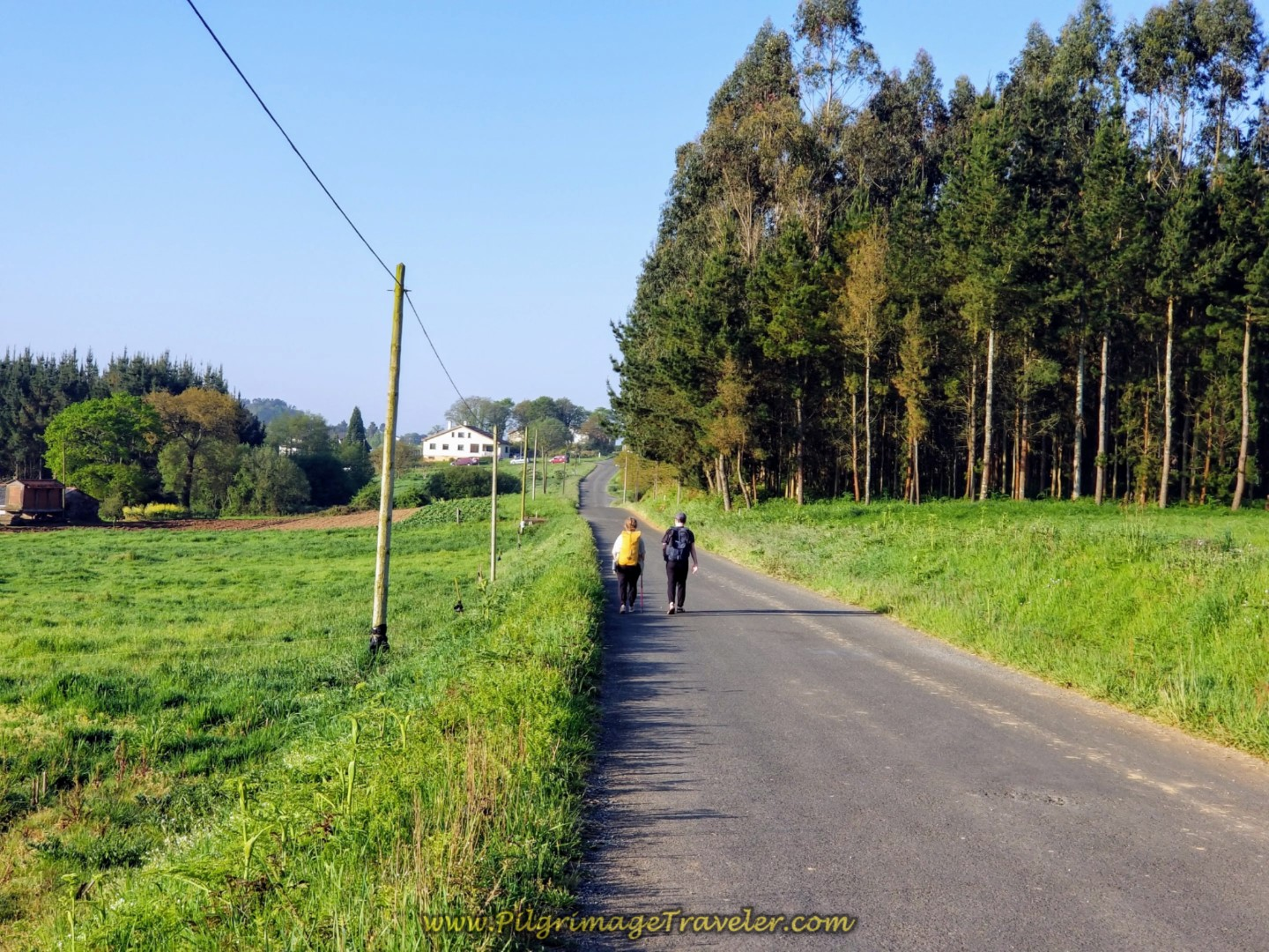 Peregrinos Walking Toward Vila Fernández on day eight of the Camino Inglés