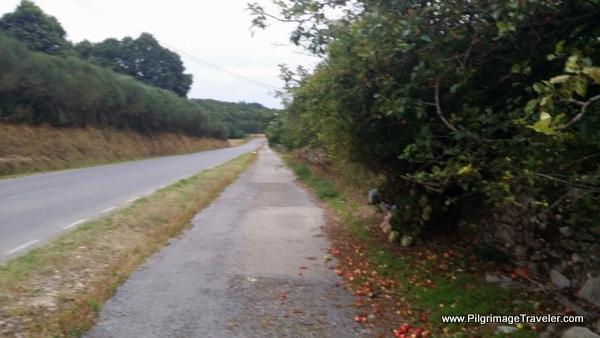 Paved Peregrino Path Along the LU-P-2901