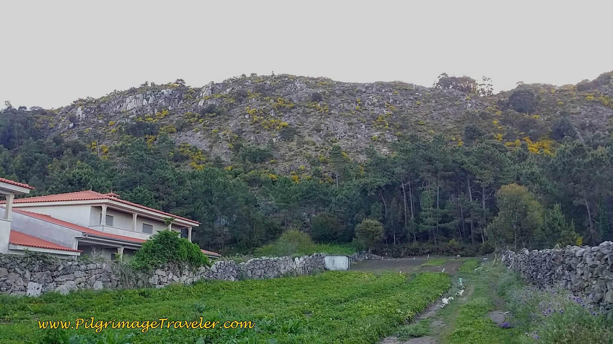 Rua da Estrada Velha with Mountain Ridge on Your Right on day seventeen of the Camino Portugués