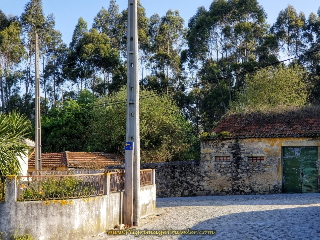 Left Turn Here onto M525 in Santagões on day sixteen of the Central Route of the Camino Portugués