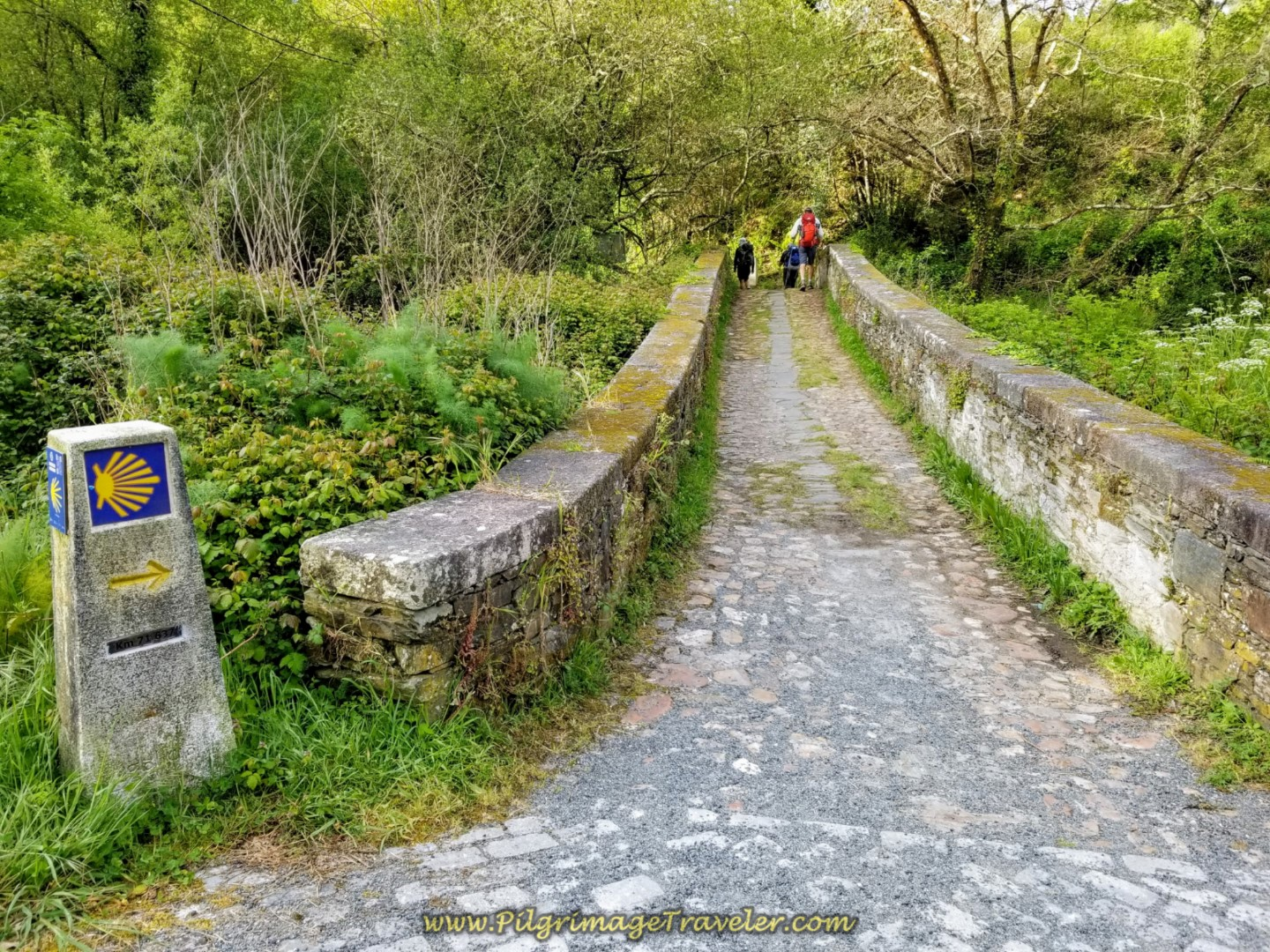 Ancient Road Across the Río Lambre on day four of the Camino Inglés