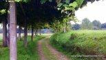 Day Two, Pontedeume to Betanzos, 20 km