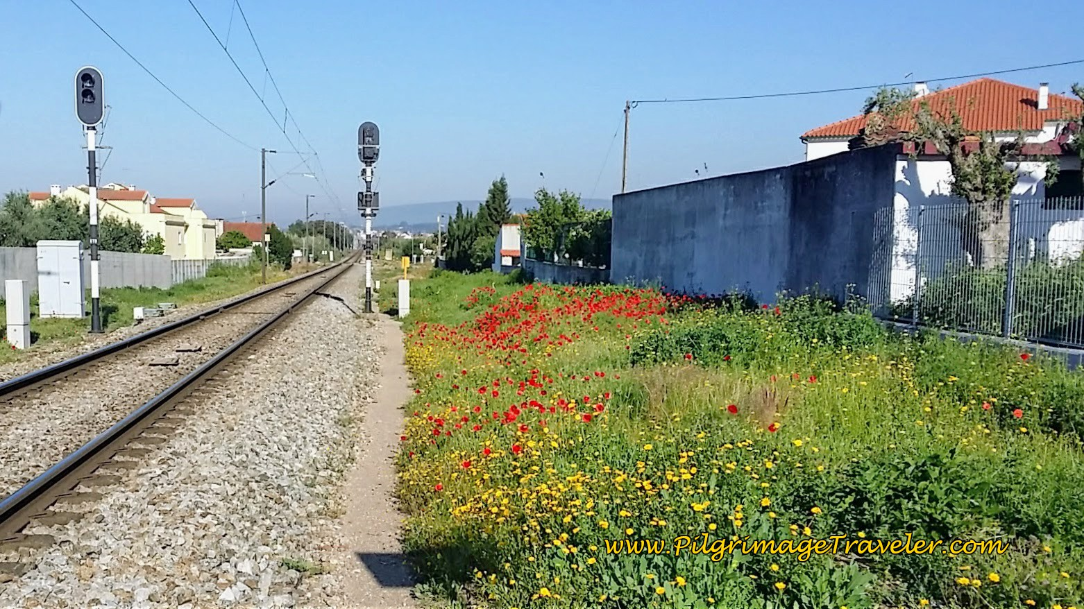Looking Westward Down the Tracks on Day Five, Camino Portugués