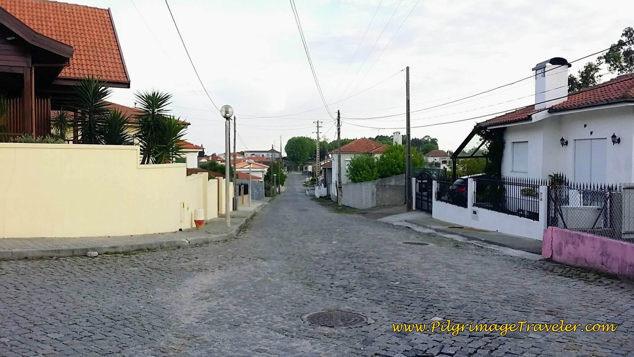 Quiet Rua Estrada Romana on Day Fourteen of the Portuguese Way