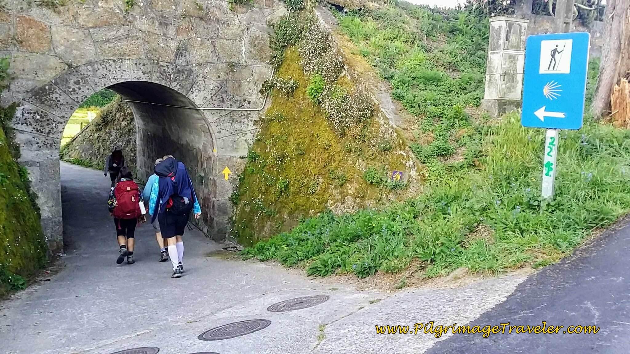 Walk Under the N-550 on Day Twenty-Four, Portuguese Way