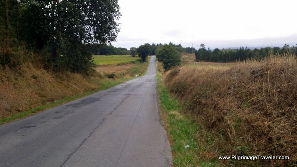 Long, Straight, Boring Stretch of the LU-P-2901, on day ten, Camino Primitivo