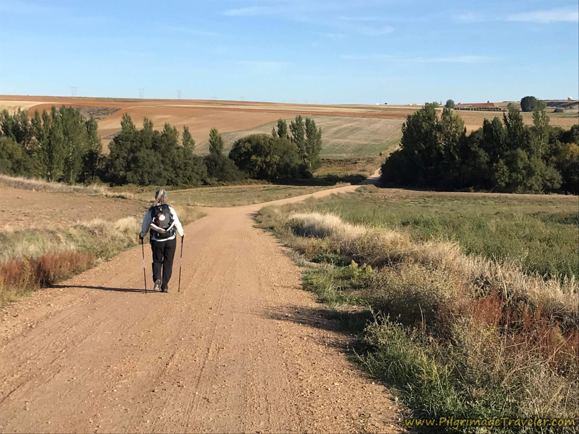 Camino de Castellanos