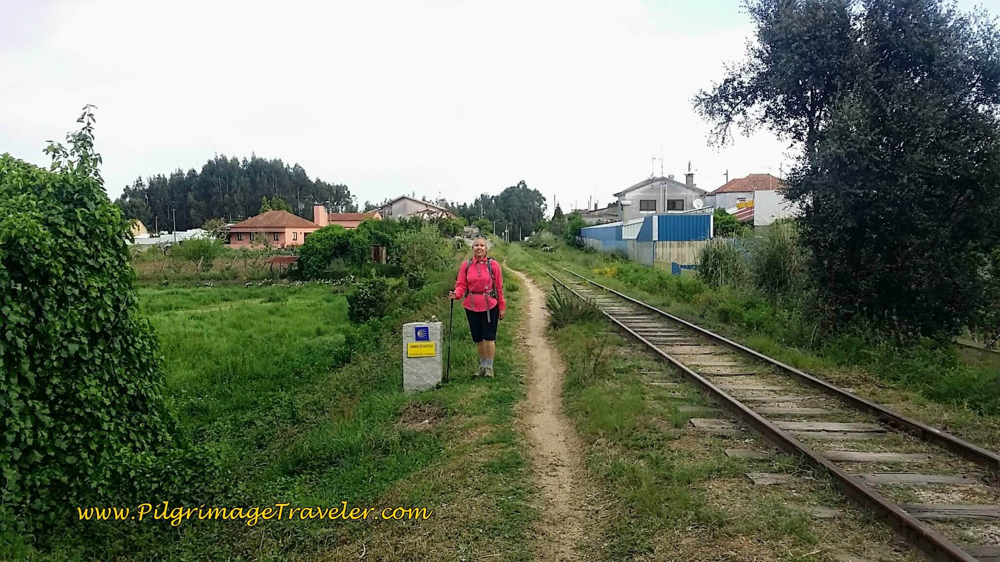 Elle by Waymark Along the Railroad Track on day thirteen on the Camino Portugués
