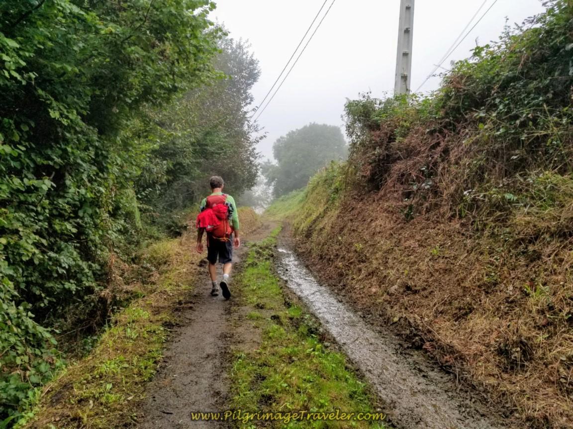 Muddy Lane Towards Casares