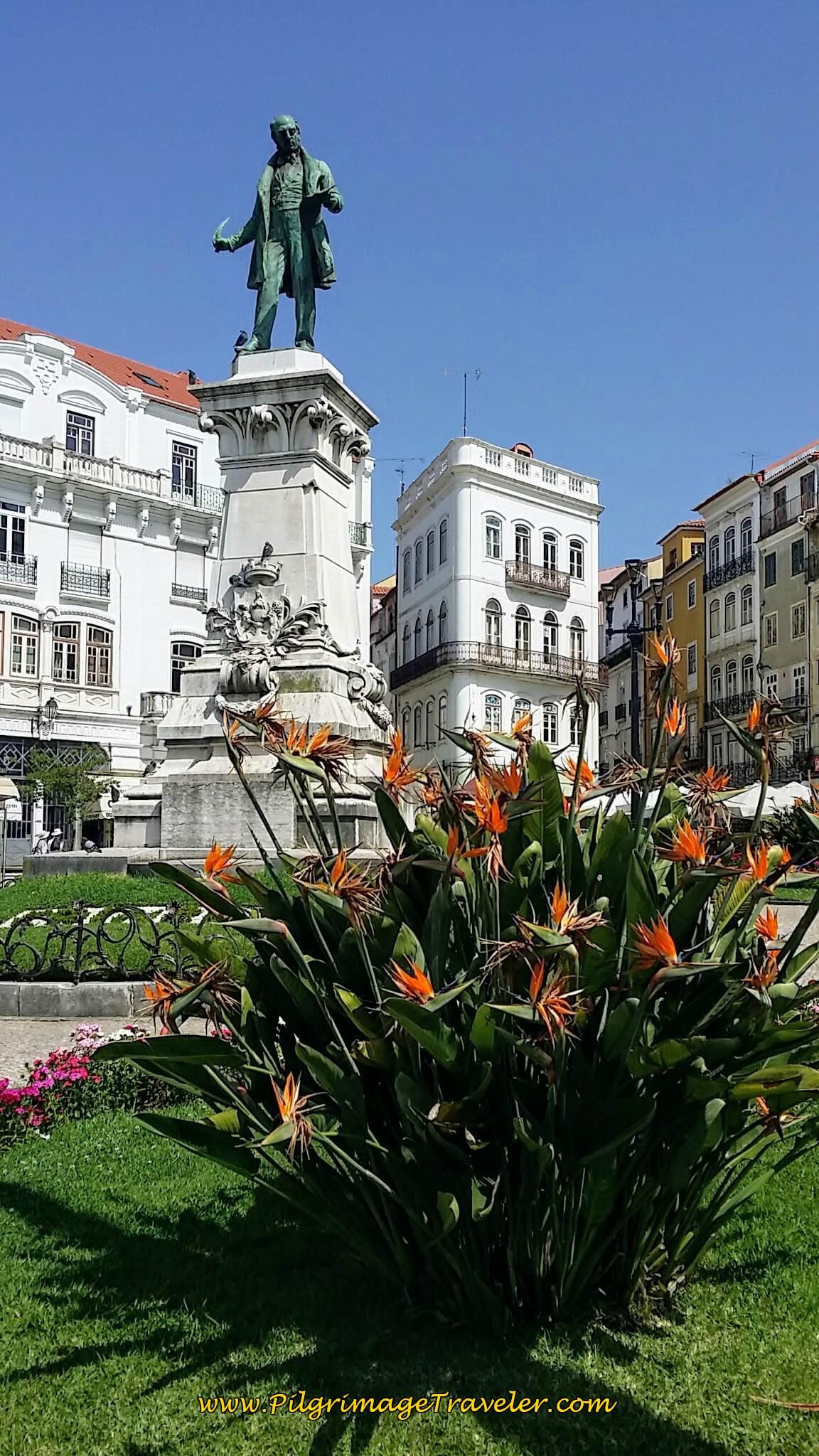 Monument to Joaquim António de Aguiar, Coimbra, Portugal