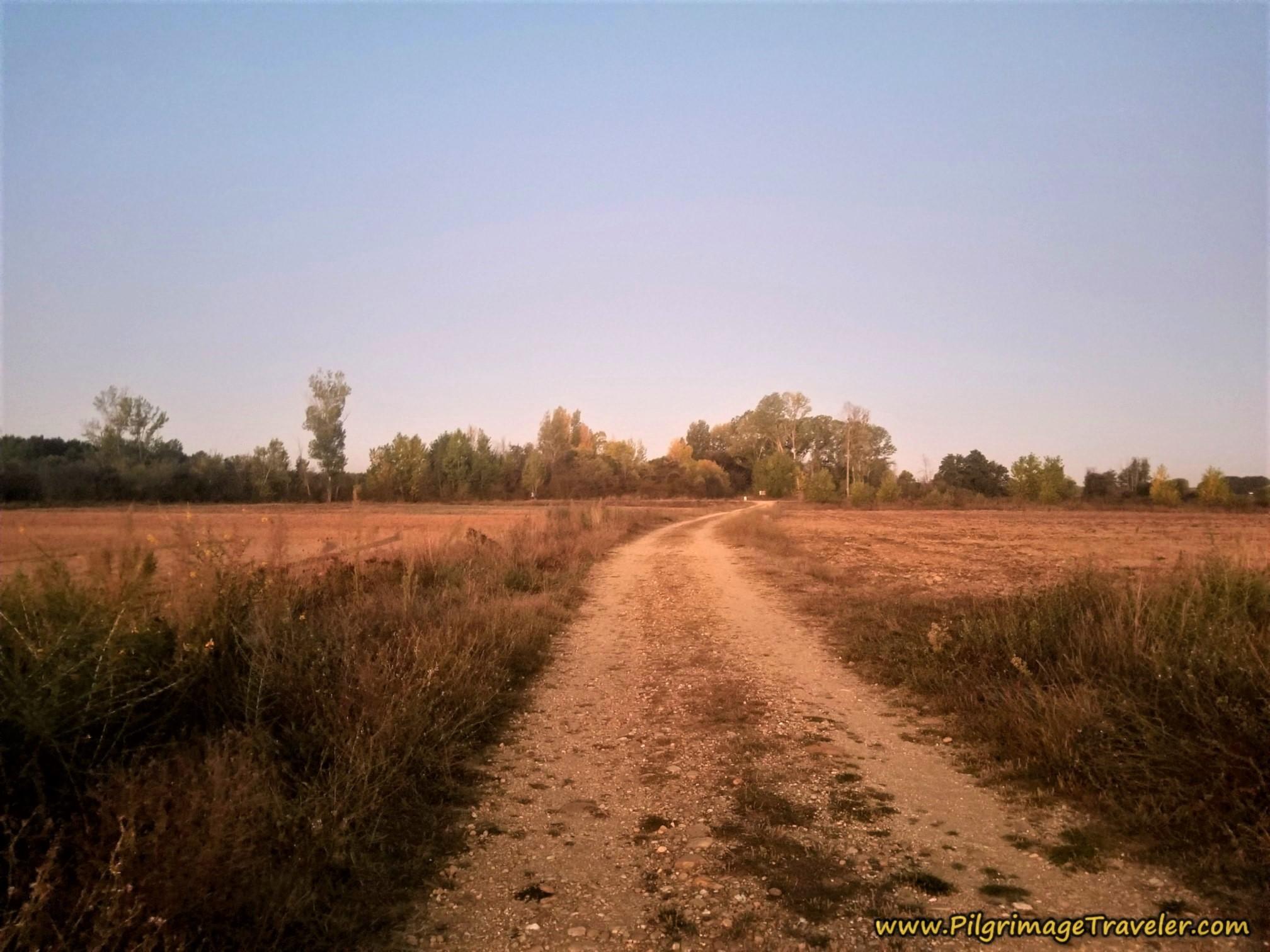 Return to Walking on Farm Roads