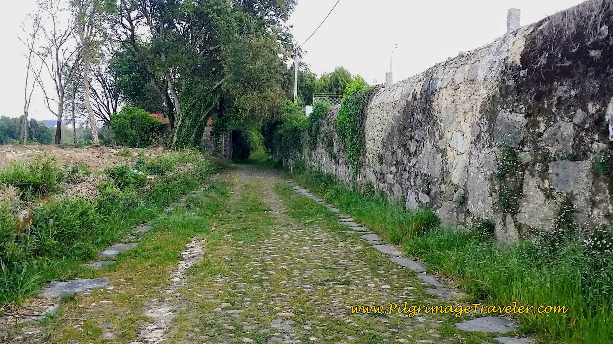 The Antique Roman Road Continues North Toward Porto on day fourteen of the Portuguese Way