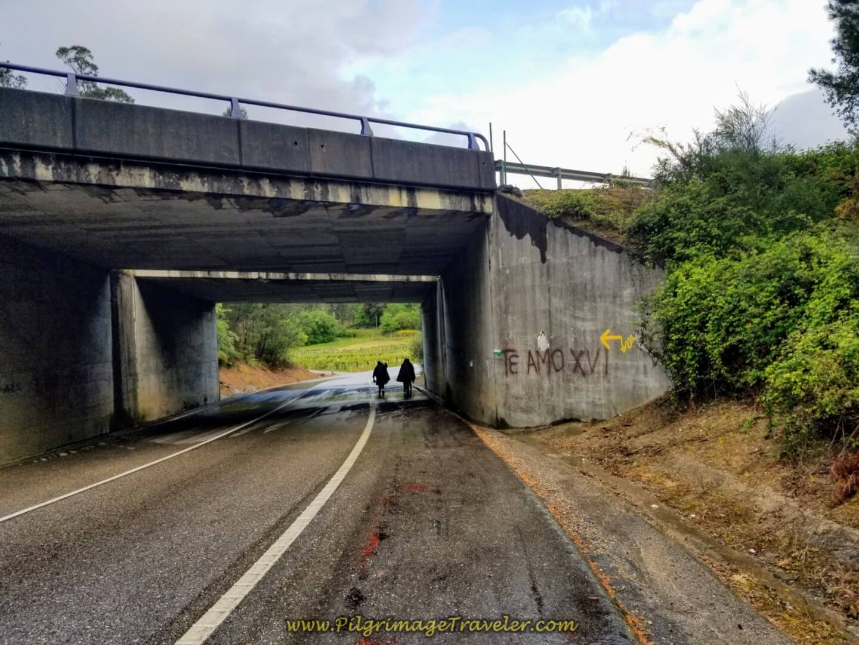 Walk Under the E-1, Autopista del Atlántico on Day twenty of the Portugues Camino on the Central Route