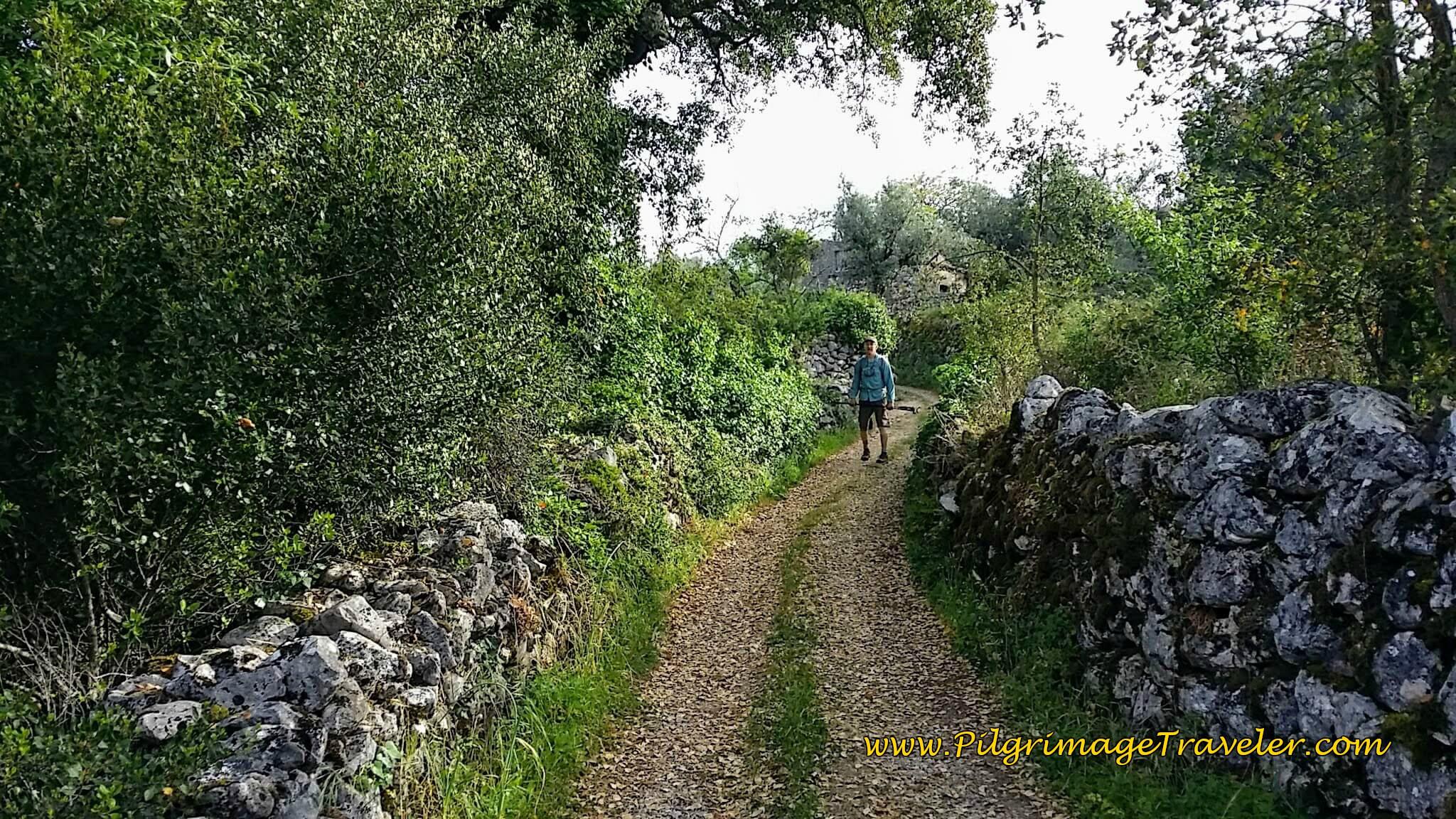 Near Casal Soeiro on the Portuguese Way