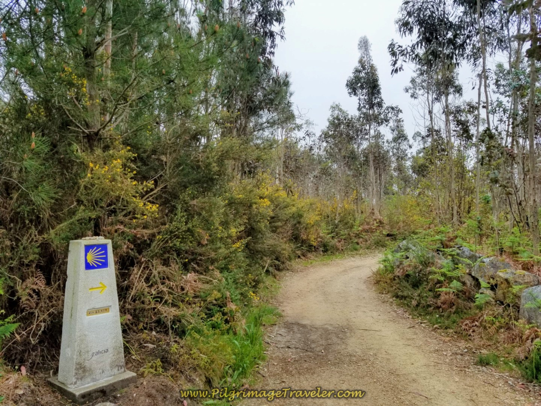 Pass 63.9 Kilometer Marker