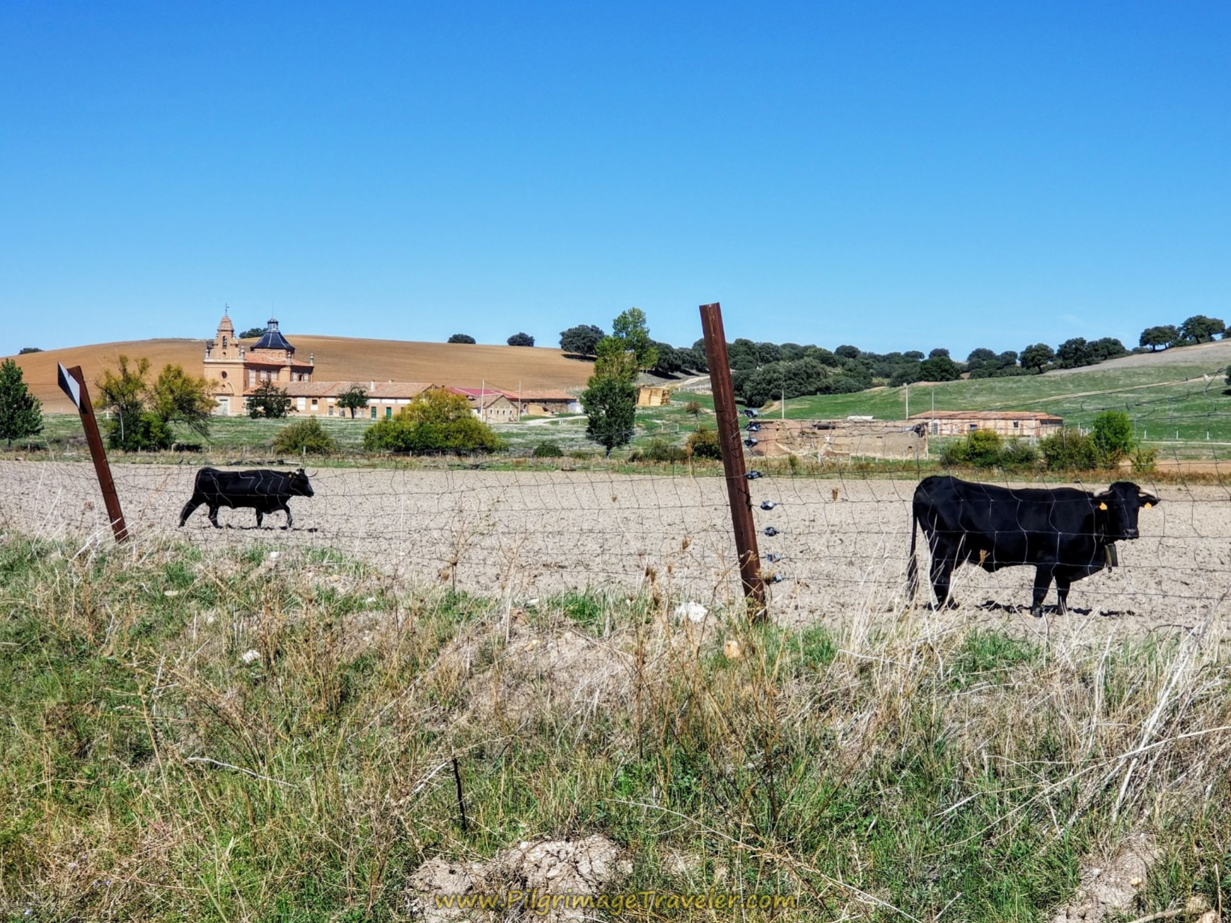Walk by the estate on day four of the Camino Teresiano