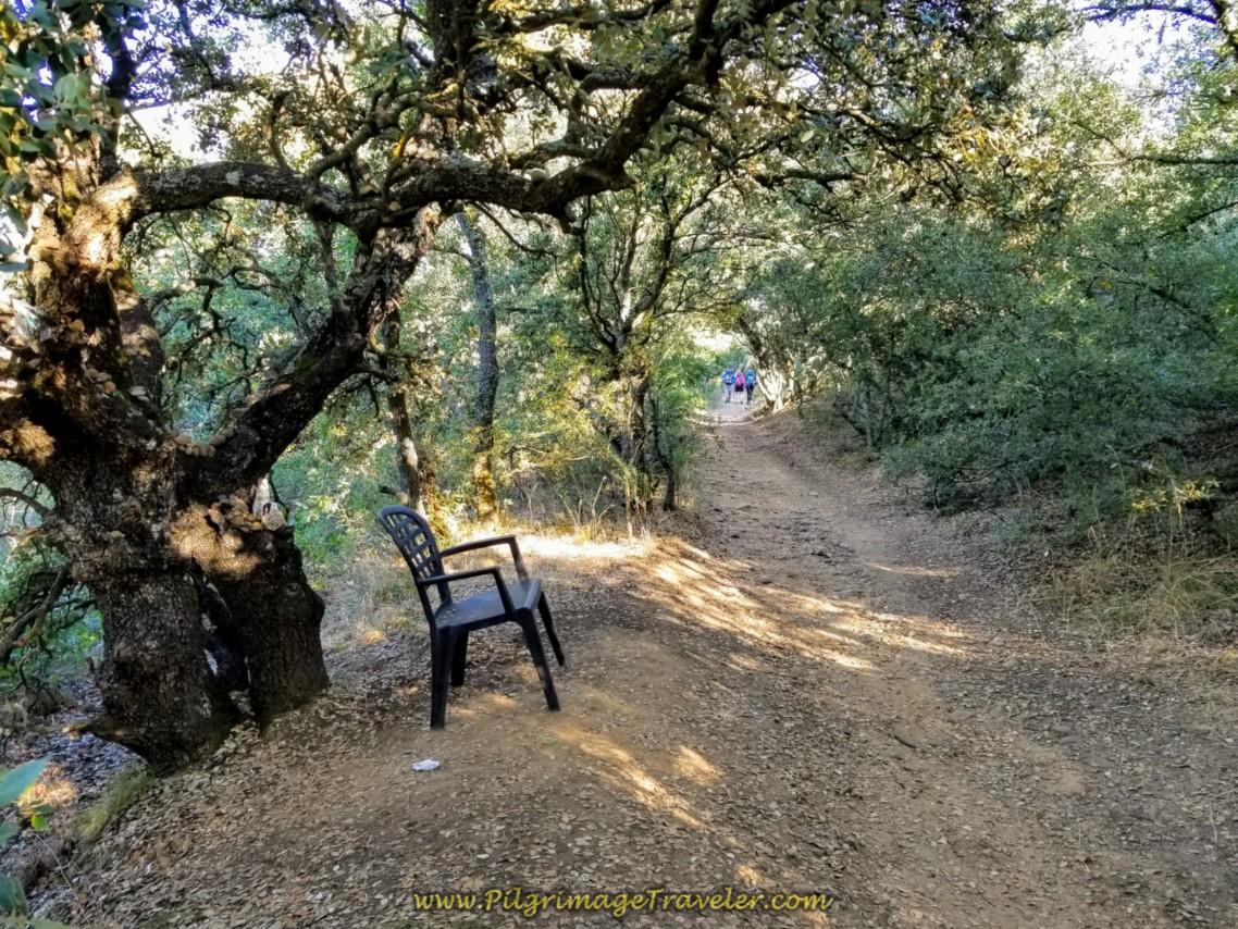 Pilgrim Rest Stop by Shrine