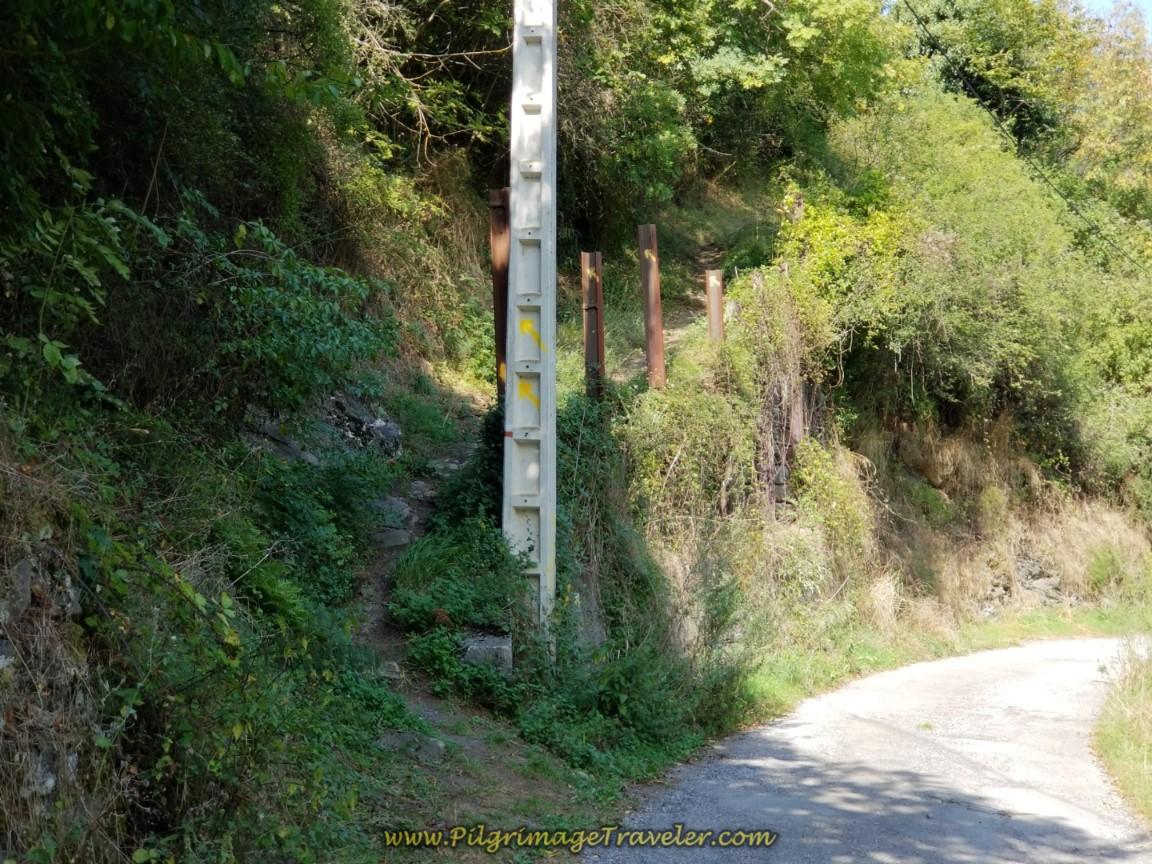 Turn Onto Path in Puente de Los Fierros